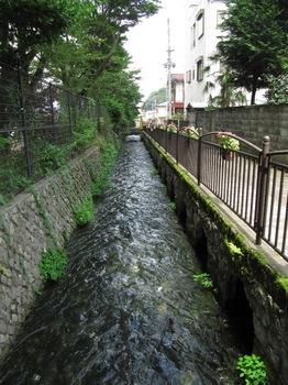 20110717tsuru05.jpg