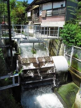 20110717tsuru06.jpg
