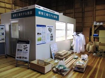 20110717tsuru08.jpg